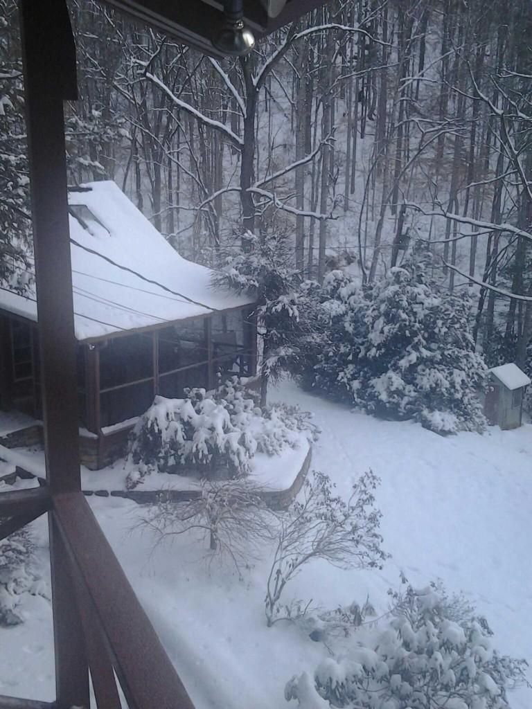 Dr. Haas's Cabin in North Carolina